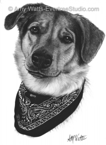 drawing-portrait-pet-dog-bandana