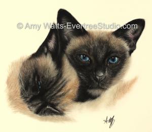 pet-portrait-drawing-cats-siamese